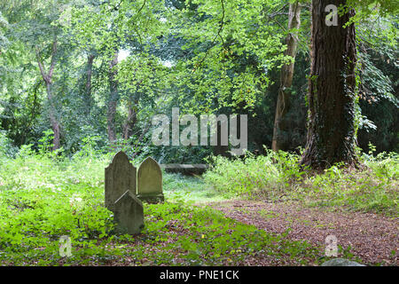 Three ancient grave markers in an old woodland cemetery in Ireland with trees and a footpath in the background - Stock Photo