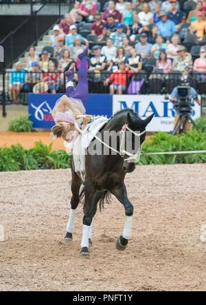 Mill Spring, NC. 20 Sep 2018. FEI WEG Tryon 2018 Continues with Jumping and Vaulting Competitions. - Stock Photo
