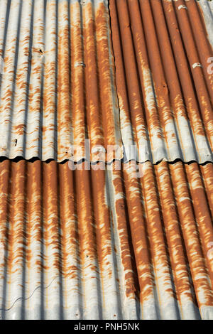 Corrugated sheet on a roof, Auvergne, France - Stock Photo