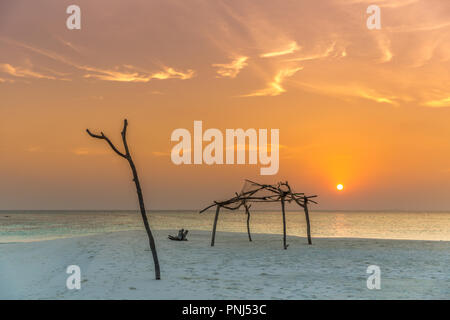 Amazing sunset with few wood silhouettes, clouds in the sky, nice colors - Stock Photo