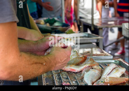 Man gutting small fish at an open air market in the fishing village on Marsaxlokk, Malta - Stock Photo