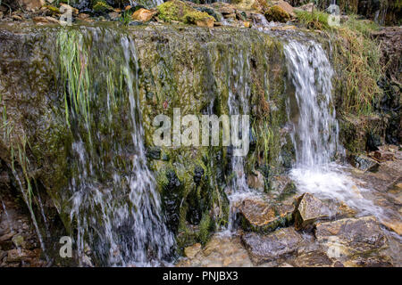 Millennial cold forest creeks, little waterfalls over the rocks with slippery moss - Stock Photo