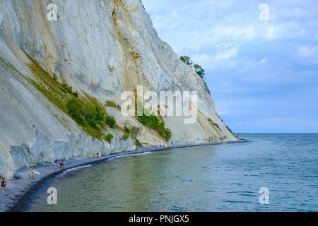 Moens Klint, the white cliffs of Moen, Moen Island, Denmark, Scandinavia, Europe. - Stock Photo