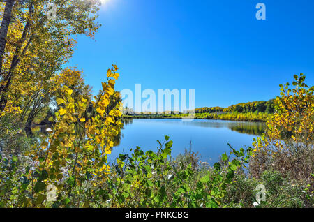 Warm sunny September landscape on the shore of lake.  Blue sky and golden foliage of trees reflected in the surface of water - beauty of autumn - Stock Photo