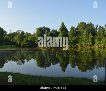 Mirror-like reflection of green tree-lined shore in a still lake on a sunny morning  with blue skies and touches of fog. - Stock Photo