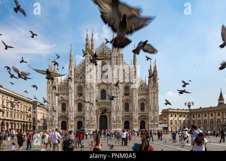 Milan, Italy - September 21, 2018: Pigeons in Piazza Duomo, Milan, Italy