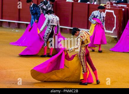 Matador, Torero or Toureiro in traditional clothing, bullfight, bullring Plaza de Toros de la Real de Maestranza de Caballería - Stock Photo