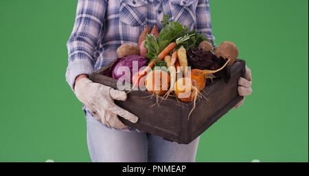 Closeup of farm woman carrying crate of vegetables on green screen - Stock Photo