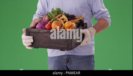 Closeup of male farmer carrying crate of vegetables on greenscreen - Stock Photo