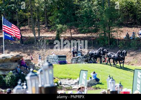 Tryon, USA. 22nd September 2018. Glenn Geerts. BEL. FEI World Team and Individual Driving Championships. Day 11. World Equestrian Games. WEG 2018 Tryon. North Carolina. USA. 22/09/2018. Credit: Sport In Pictures/Alamy Live News - Stock Photo