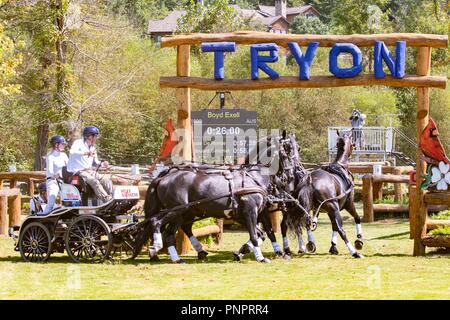Tryon, USA. 22nd September 2018. Boyd Exell. FEI World Team and Individual Driving Championships. AUS. Day 11. World Equestrian Games. WEG 2018 Tryon. North Carolina. USA. 22/09/2018. Credit: Sport In Pictures/Alamy Live News - Stock Photo