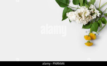 floral composition with lilac flower, sow-thistles and forget-me-not flowers on light-gray paper, with copy space - Stock Photo