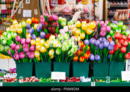 Flower multi-colored tulip souvenirs for sale in Amsterdam, Netherlands - Stock Photo