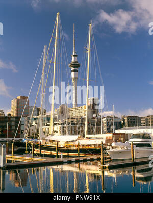New Zealand. Auckland. City harbour scene with moored boats and Sky Tower. - Stock Photo