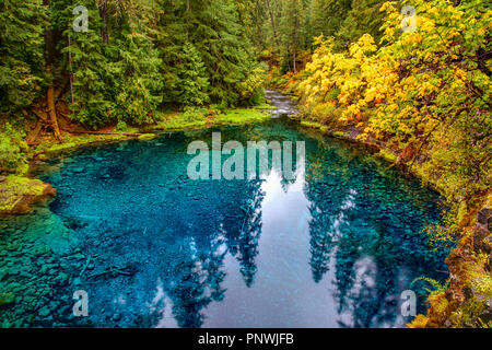 Autumn Color at Tamolitch Pool (The Blue Pool) on the McKenzie River Near Eugene Oregon - Stock Photo