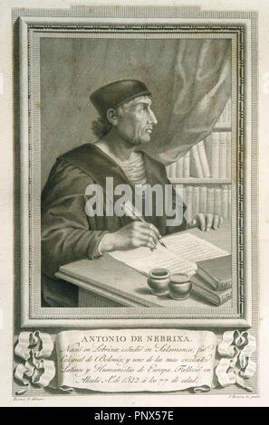 Antonio de Nebrija (1441-1522). Spanish scholar, historian, teacher and poet. Engraving. - Stock Photo