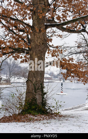 Snow falls on an oak tree dressed in reddish-brown winter foliage at January-Wabash Park in Ferguson, Missouri, with the park's lake and lighthouse in - Stock Photo