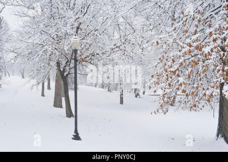 Palm Sunday snowfall at January-Wabash Park with a street light beside a walking path. - Stock Photo