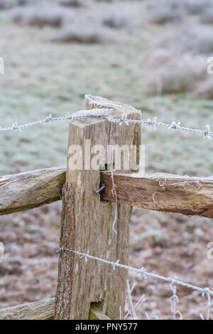 Frosty barbed wire on a rustic wooden fence in Surrey, rural landscape, southeast England, near Pyrford after very low temperatures and freezing fog - Stock Photo