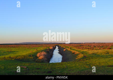 A drainage ditch at Cliffe marsh on the Hoo peninsula, Kent, in winter, late afternoon on a clear day. The area is a haven for migrating birds - Stock Photo