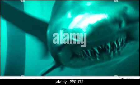 Prod DB © Incentive Filmed Entertainment - Next Films - Sierra Pictures / DR SHARK 3D (SHARK NIGHT 3D) de David R. Ellis 2011 USA requin, monstre, horreur - Stock Photo