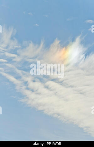Feather-like cirrus clouds refracting sunlight to create a sundog against an indigo backdrop at the end of December. - Stock Photo