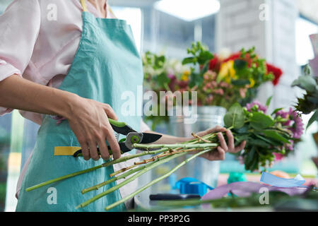 Florist Cutting Flower Stems - Stock Photo