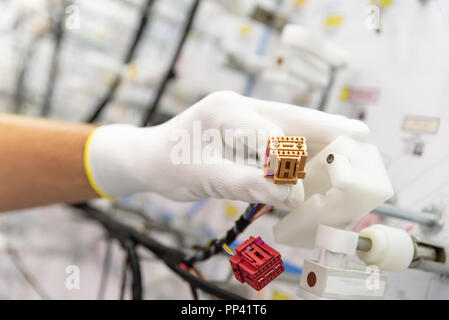 Process of manufacturing the wiring harnesses for vehicles, workflow, automobile industry - Stock Photo