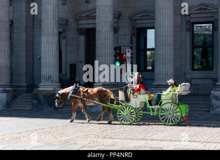 A female horse and carriage driver with bright blue hair telling her customers about the history of Champ de Mars in Montreal Old Town - Stock Photo
