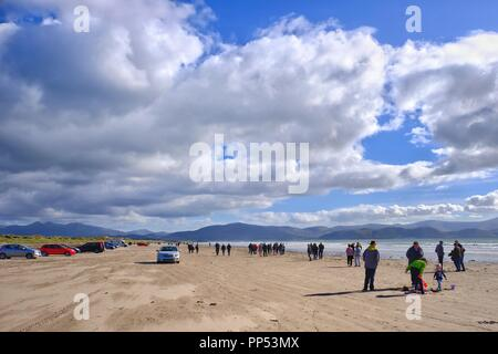 Inch Beach,The Dingle, County Kerry, Ireland. 23 September 2018 After days of storms and heavy rain visitors and residents enjoy a sunny but blustery day on Inch Beach on Ireland's Dingle Peninsula in County Kerry. Credit: Tom Corban/Alamy Live News - Stock Photo
