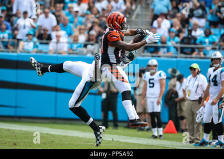 Charlotte, North Carolina, USA. 23rd Sep, 2018. Carolina Panthers wide receiver Devin Funchess (17) and Cincinnati Bengals defensive back Darqueze Dennard (21) during game action at Bank of America Stadium in Charlotte, NC. Carolina Panthers go on to win 31 to 21 over the Cincinnati Bengals. Credit: Jason Walle/ZUMA Wire/Alamy Live News - Stock Photo