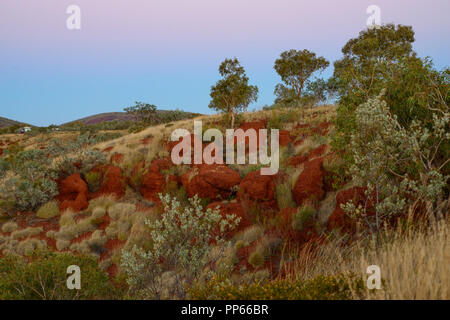 Albert Tognilini Rest Area, near Karijini National Park, WA, Australia - Stock Photo