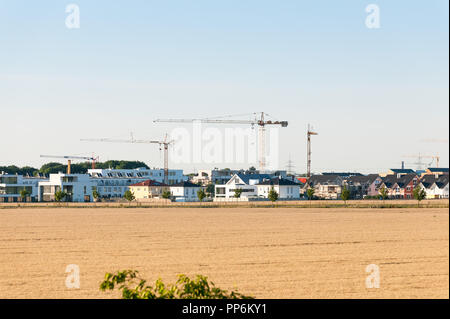 Construction of modern residential houses next to cornfield. - Stock Photo