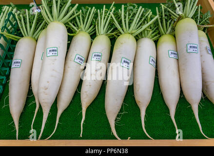 Daikon radish on sale at market, Japan - Stock Photo