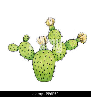 Mexican Cactus with Spines or Thorns and Flowers as Isolated Clipart for Cinco De Mayo Holiday or Celebration. Edible Raster Esculent Cacti Like Sagua - Stock Photo