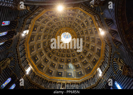 The ceiling or roof of the dome, in the interior of Siena Cathedral ( Duomo Siena ), Siena, Tuscany Italy Europe - Stock Photo