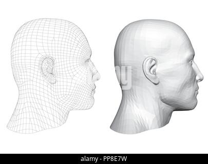 Realistic male head. Polygonal skin. Isolated. 3D. EPS 8. Vector illustration. - Stock Photo