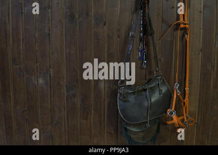 saddle horse reins on Brown wooden wall - Stock Photo