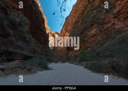 cathedral gorge, Purnululu, the Bungle Bungles, East Kimberley region , Western Australia - Stock Photo
