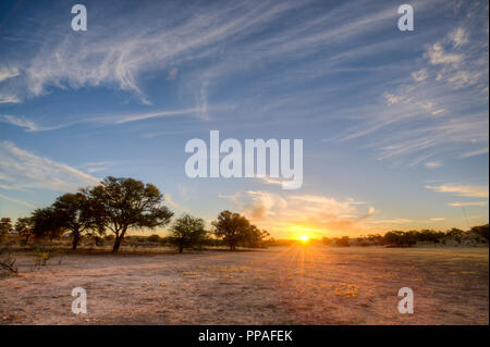 Deep colours as the sun sets over a dry riverbed in the Kgalagadi between South Africa and Namibia - Stock Photo