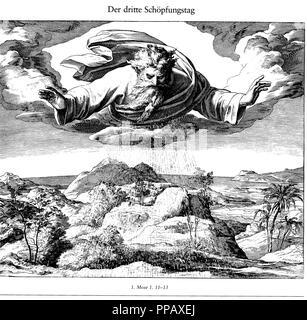 The Third Day of Creation (From Die Bibel in Bildern). Museum: PRIVATE COLLECTION. Author: SCHNORR VON CAROLSFELD, JULIUS. - Stock Photo