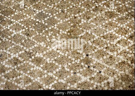 Roman era. Opus signinum paviment. 1st century BC-1st century AD. Area of the port quarry. Detail. Tarragona.  National Archeological Museum. Tarragona. Spain. - Stock Photo