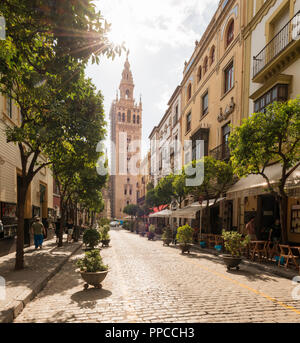 Street overlooking La Giralda, belfry of Seville Cathedral, Catedral de Santa Maria de la Sede, Seville, Andalusia, Spain - Stock Photo