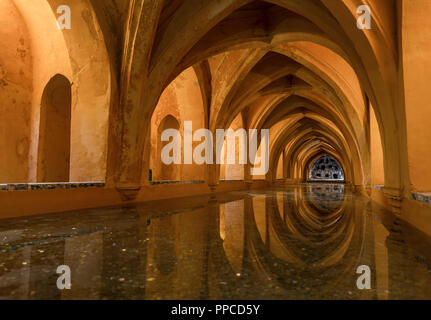 Bath in the vaulted cellar, Banos de Dona Maria de Padilla, Royal Residence, Real Alcazar Palace, Reales Alcazares, Seville - Stock Photo