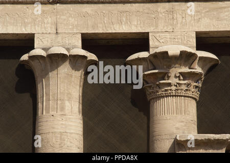 Egypt. Temple of Edfu. Ancient temple dedicated to Horus. Ptolemaic period. It was built during the reign of Ptolemy III and Ptolemy XII,  237-57 BC. North side of the firts courtyard. Detail of twoo capitals: palm trees, lotus. - Stock Photo
