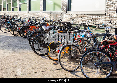 Colorful bicycles parked on a cobblestone street in Rotterdam against a building, background. - Stock Photo