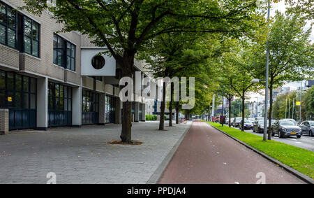 Bike and traffic lanes, sidewalk for pedestrian with trees.Traffic in the city, Rotterdam, Netherlands. Perspective view - Stock Photo