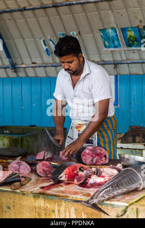 Negombo Sri Lanka July 24 2017 - Man selling fresh tuna fish at the fish market in Negombo - Stock Photo