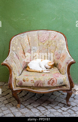 Ginger cat sleeping on sofa chair in front of a house - Stock Photo