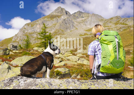 Hiking with a Boston terrier dog in the mountains - Stock Photo